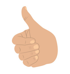 Hand all good light skin icon vector
