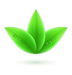 Natural leaf 05 vector image