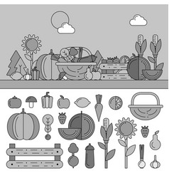 summer basket with vitamins line monochrome vector image