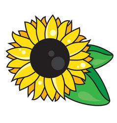 symbol sunflower with leaves isolated on white vector image