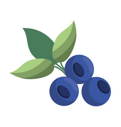 blueberry leaves diet icon vector image vector image