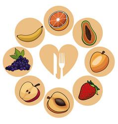 food healthy fruits nutrition image vector image vector image