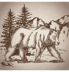 Hand drawing bear walk vintage landscape vector