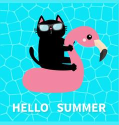 Hello summer swimming pool water black cat vector