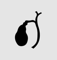 Human gallbladder anatomy dyskinesia the vector