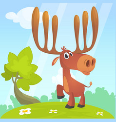 cool carton moose vector image