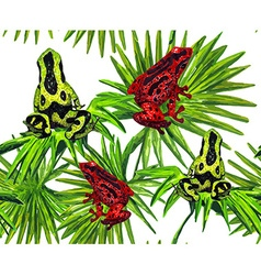 Frog Pattern vector image