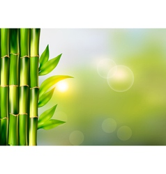 Spa background with bamboo vector image vector image