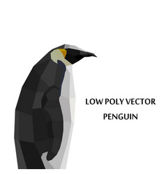 abstract polygonal penguin isolated on vector image