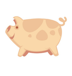 Cute big pig vector