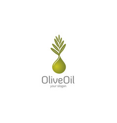 olive oil logo vector image