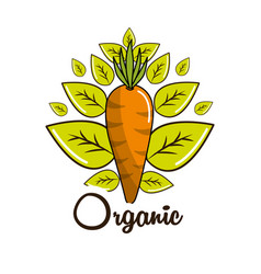 Organic food icon stock vector