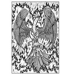 Phoenix engraved fantasy vector