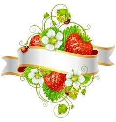 ripe strawberry and ribbon vector image