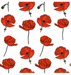seamless floral pattern with poppy flowers vector image