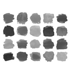 set gray watercolor stains on white vector image