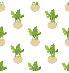 green kohlrabi seamless pattern type of cabbage vector image