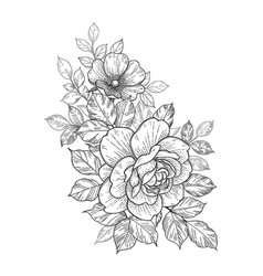 Hand drawn floral bunch with roses and leaves vector