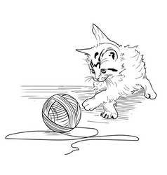 kitten on a white background vector image