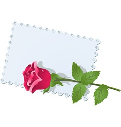lace napkin and rose vector image