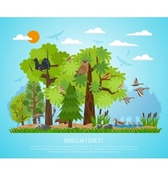 Poster Of Birds In Forest vector