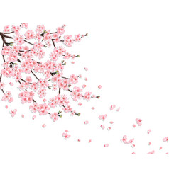 Sakura a lush cherry branch with pink flowers in vector