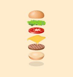 burger s ingredients vector image