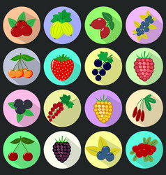 Icons of fruits and berries in a set on a dark vector