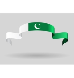 Pakistani flag background vector