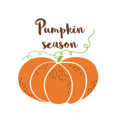 pumpkin season logo pumpkin icon hand drawn autumn vector image