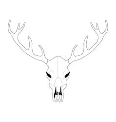 Deer skull line art vector image vector image