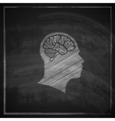 human head with brain on blackboard background vector image