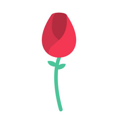 Red rose isolated flower and green leaves and vector