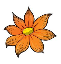 An orange flower vector image