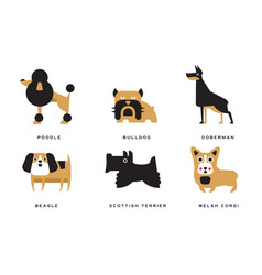 Breeds dogs collection poodle bulldog vector