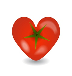 Design tomato heart icon on a white background vector