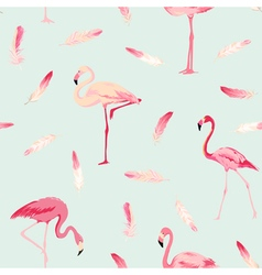Flamingo Bird Background Flamingo Feather vector