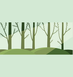 forest with sunbeam vector image