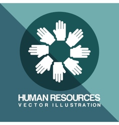 human resources vector image