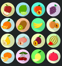 icons of fruit in a set on a dark background vector image