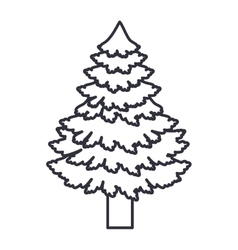 Pine tree of Christmas season design vector