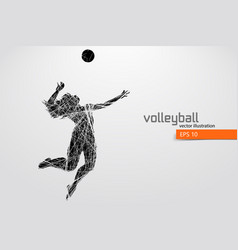 Silhouette of volleyball player vector
