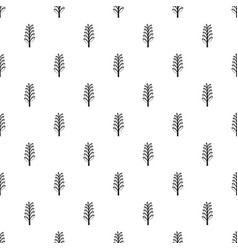 spica pattern vector image vector image