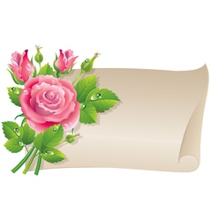 Roses scroll vector image vector image