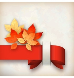 Autumn Fall Leaves Card vector image