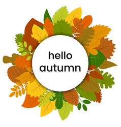 autumn leaves in circle with hello autumn vector image
