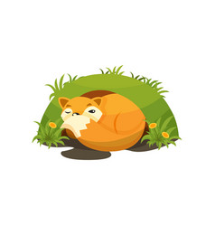Cute fox sleeping in a den on vector