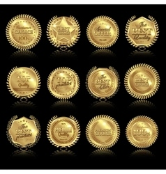 Medals with reflections set vector