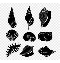 set of seashells silhouettes vector image vector image