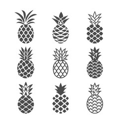 Abstract pineapple icons set vector